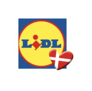 Lidl Graduate Program