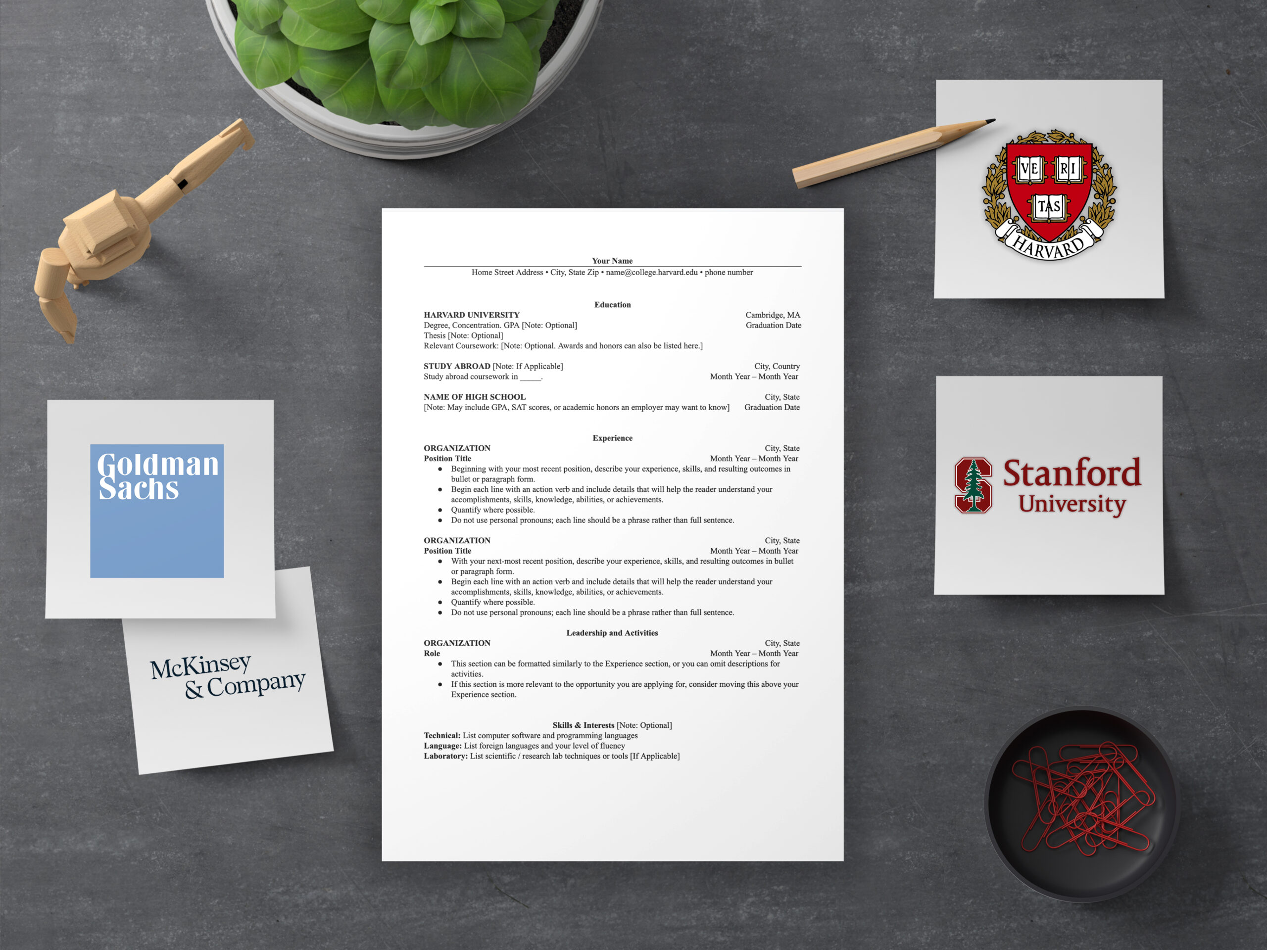 4 Cv Templates Used By Harvard And Mckinsey And The Danish Job Market
